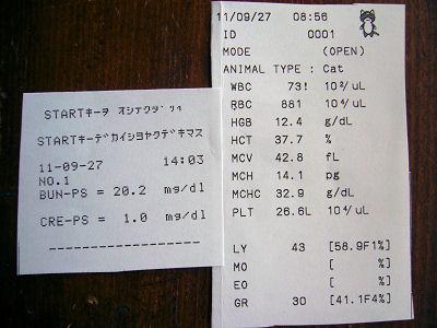 20110927血液検査結果