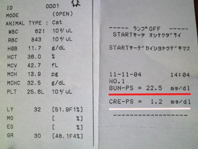 20111104血液検査