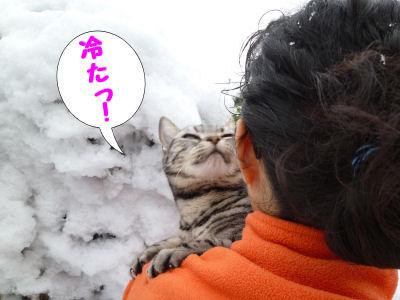雪、覚えてる?1