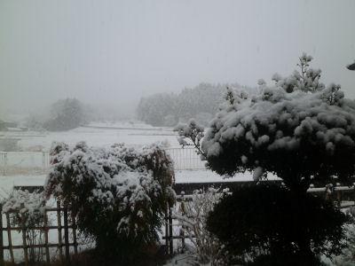 2012年の初雪