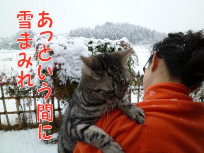あっという間に雪まみれ