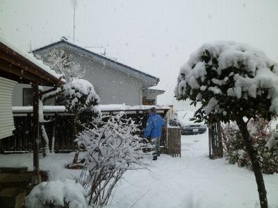 今季一番の雪
