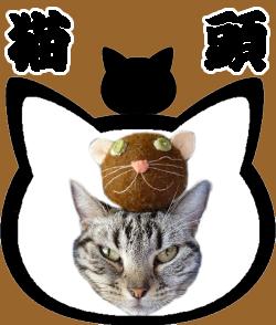 neko04_shima.jpg