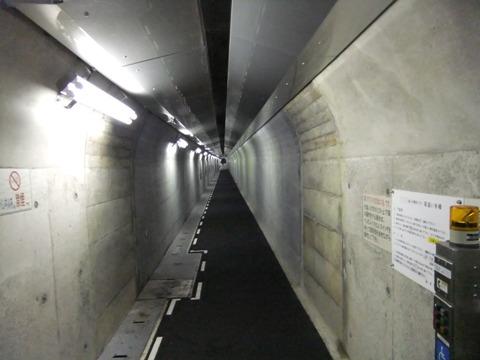 20110526b.jpg