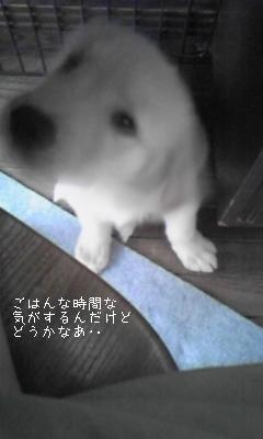 090625_132419.jpg
