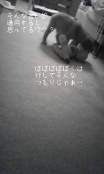 090627_194238.jpg