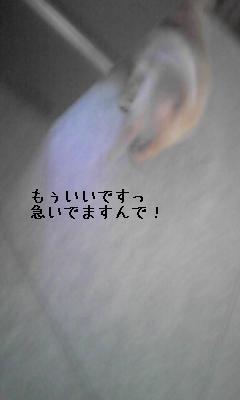 画像 422