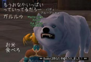 b7_20090123031806.jpg