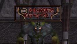 d29.jpg