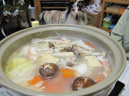 カニさん、入湯でつ♪