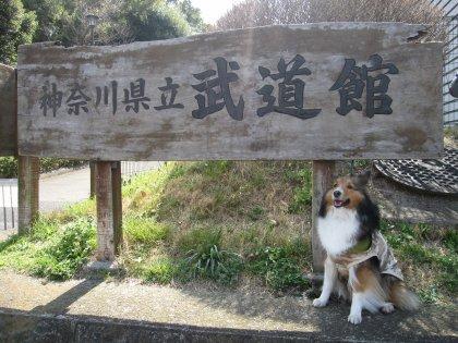 優勝賞品は馬肉1年分でつ!!