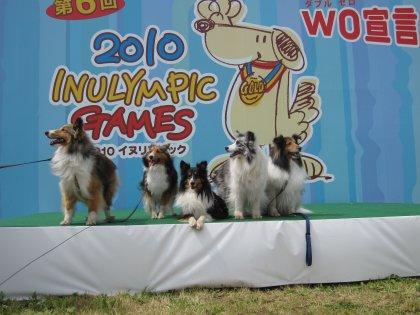イヌリンピック2010 お写真17