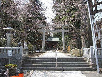 静かな湖畔の森の神社でつ♪