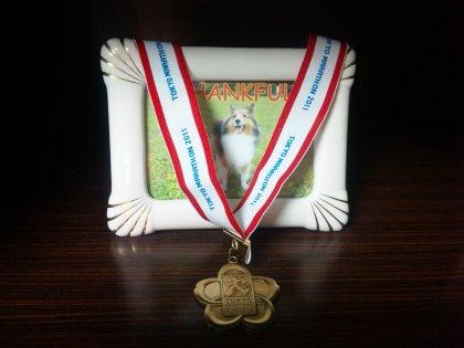 メダル貰ったんでつよ♪