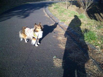 3月14日朝のお散歩2