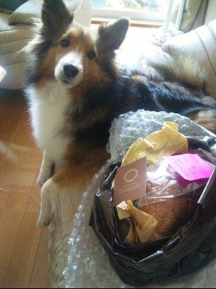 Hanakoさんのお勧めパンなんでつってw