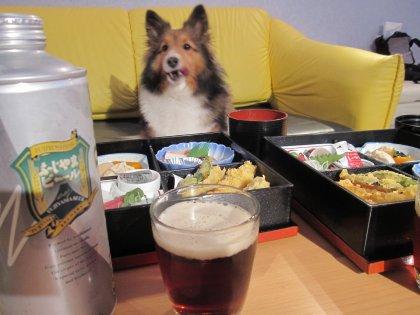 1泊2食つき、1家族ワンコ無料で5000円だったんでつよw
