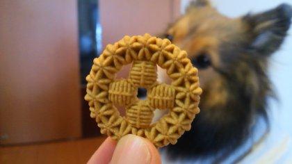 モデルのご褒美は蜜さんお手製のウマウマクッキーでつ♪