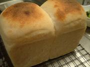 焼成後のパン