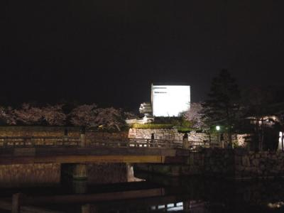 20110409yozakura029.jpg