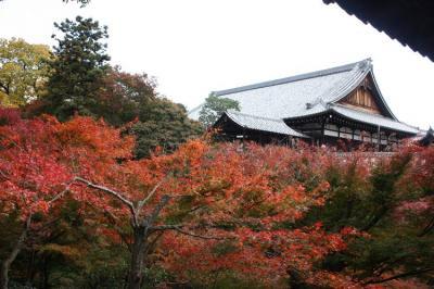 toufukuji025.jpg