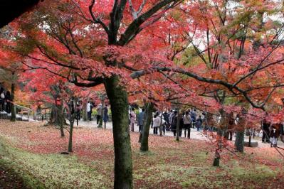 toufukuji042.jpg