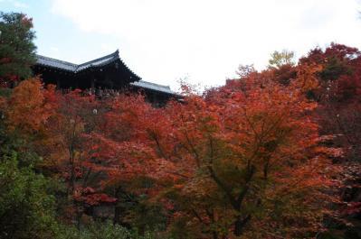 toufukuji046.jpg