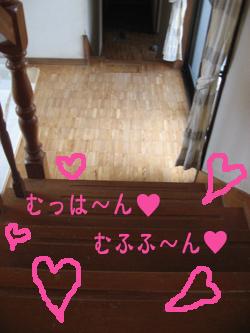 5IMG_5125.jpg