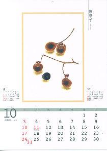 カレンダー ムクロジ