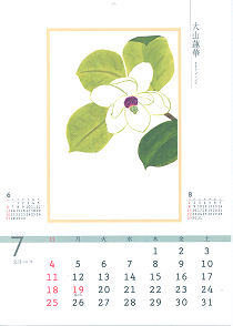 カレンダー オオヤマレンゲ
