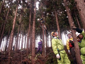 森林施業体験会