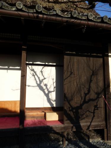 124asukasiryo02.jpg