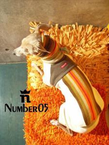 NUMbER 05/SEIGO FUJII