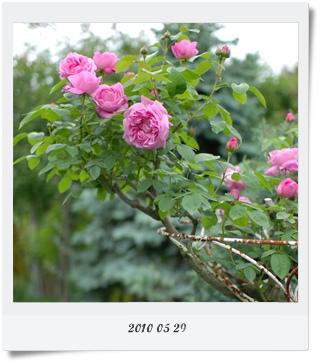 720-6.jpg