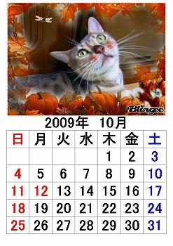 10_20090930223811.jpg