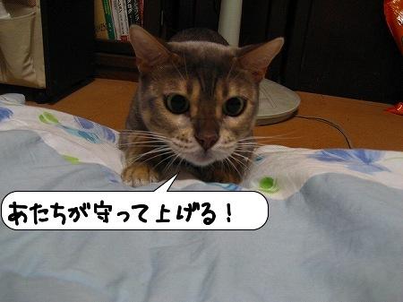 20091007_234808.jpg