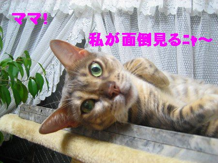IMG_3882-1.jpg