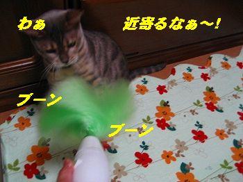 IMG_44821.jpg