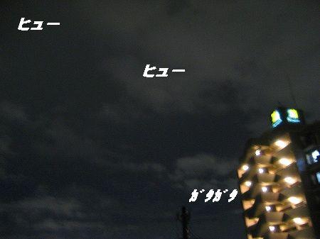 IMG_4541-1.jpg