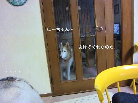 IMG_1640_20101204235049.jpg
