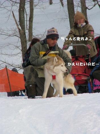 IMG_5919_20110309231802.jpg