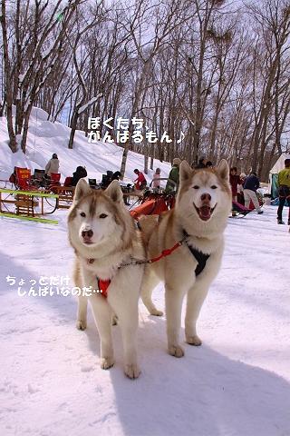 IMG_6426_20110309223452.jpg