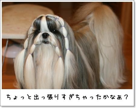 2008_1125_073918AA.jpg