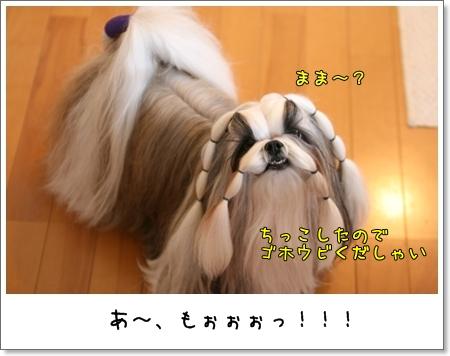 2008_1201_073003AA.jpg