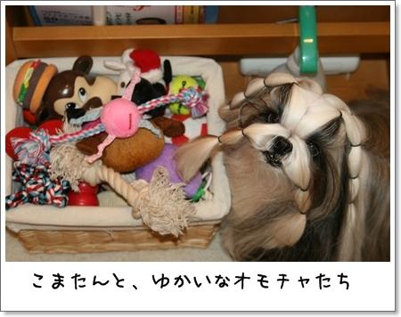 2008_1201_073645AA.jpg