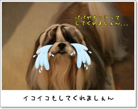 2008_1202_073602AA.jpg