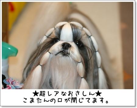2008_1204_073842AA.jpg