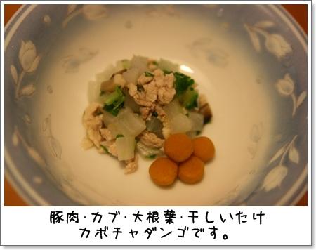 2008_1207_195429AA.jpg