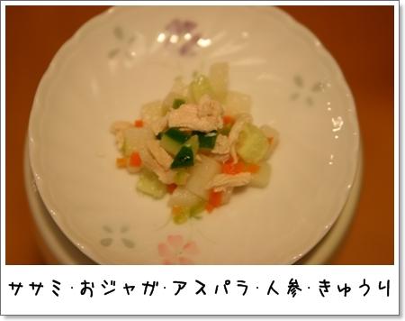 2008_1217-1.jpg