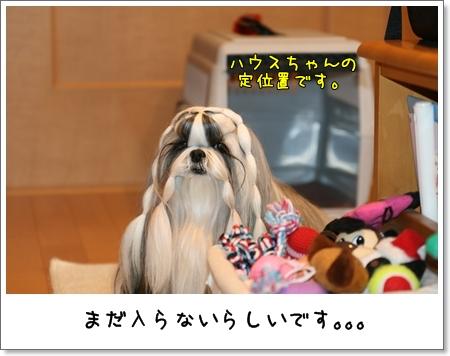 2008_1217_073216AA.jpg